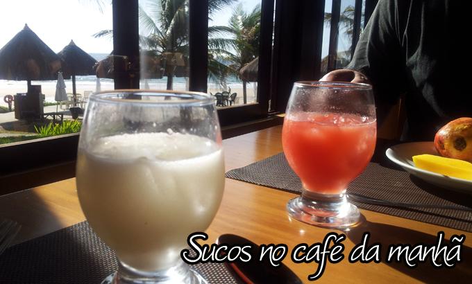 Post Blog Sucos