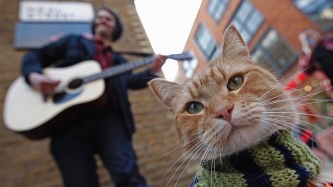 James-Bowen-e-o-gato-Bob