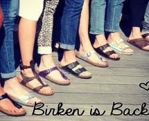 birken