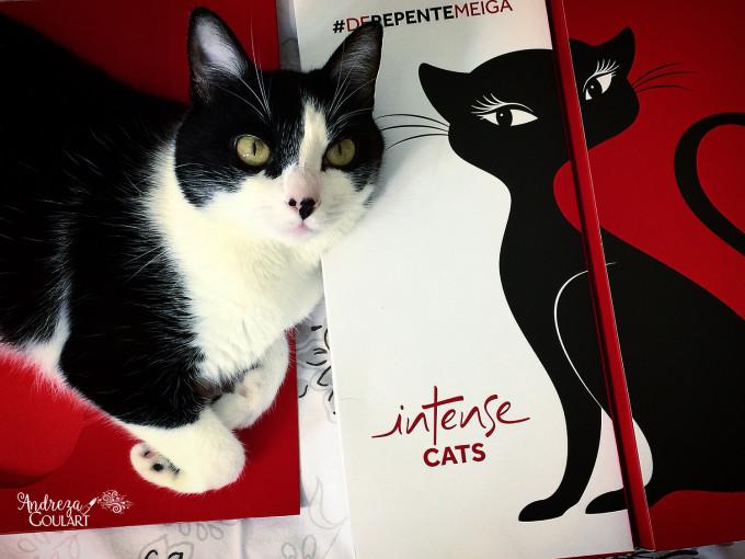 Intense Cats Amora